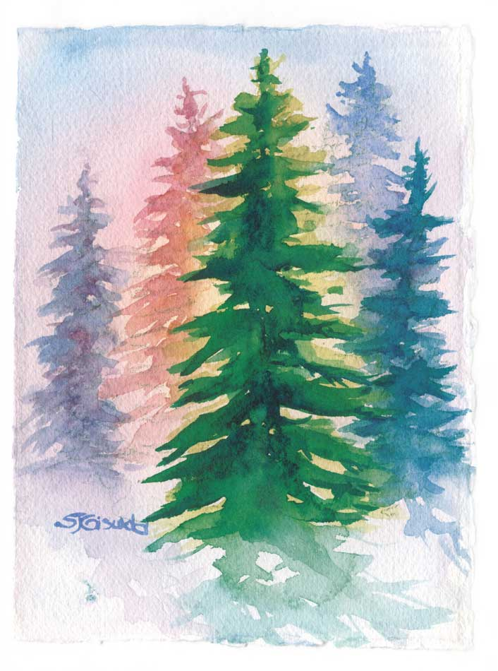 Many Colors of Evergreen Trees